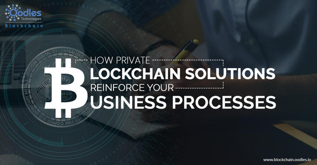 How Private Blockchain Solutions Reinforce Your Business Processes