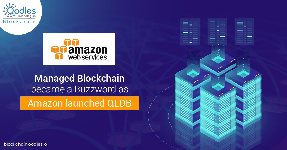 Blockchain application development platforms