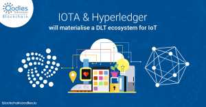 Blockchain Eccentricities: IoT as the Nexus of IOTA and Hyperledger Fabric Solutions