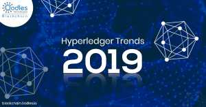 Hyperledger Development and Consulting