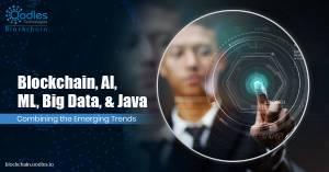 Application Development using Blockchain, AI, ML, Big Data and Java