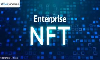Enterprise NFT solutions