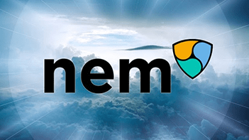 NEM Application Development Services