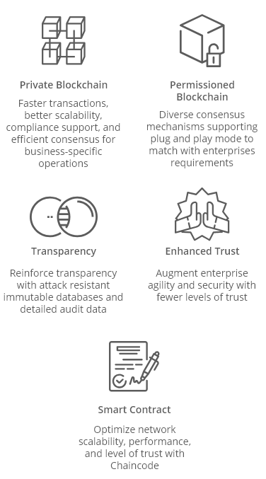 Hyperledger Development Services