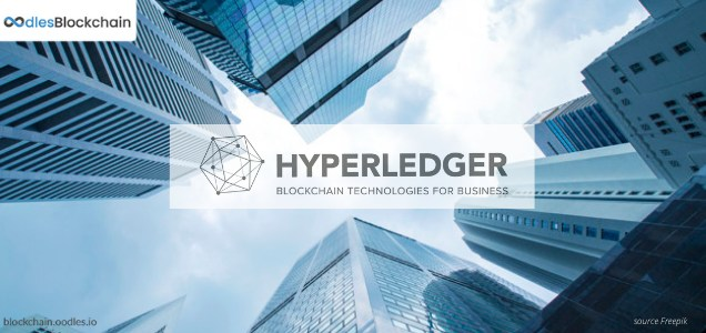 hyperledger blockchain use cases for business (2)