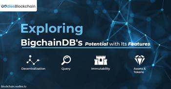 belfrics blockchian solutions